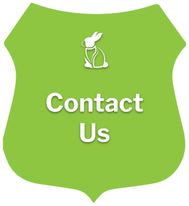 Contact Our Veterinary Clinic