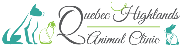 Quebec Highlands Animal Clinic